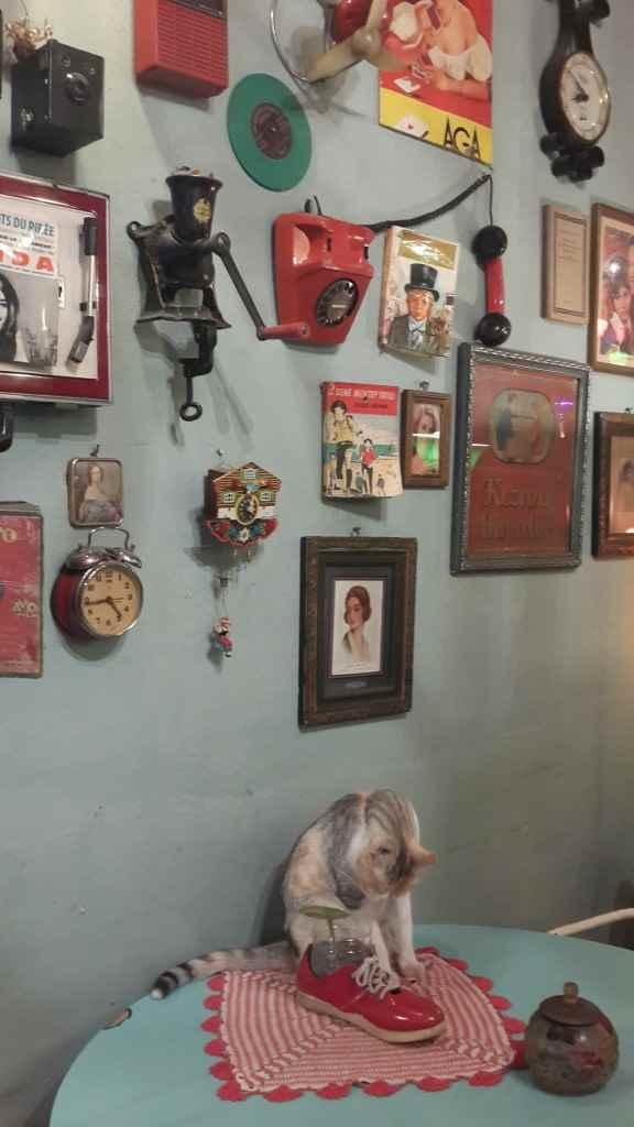 yesempatik-cafe-naftalin-fener-balat-mekan-kahve-vintage-kedi